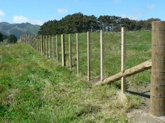 7 Wire Fence 003.jpg